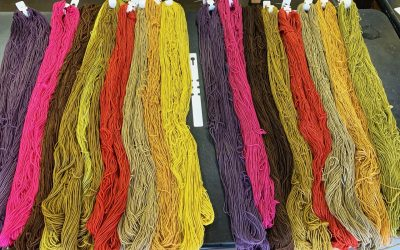 Explorations in color: Natural Dye Workshop